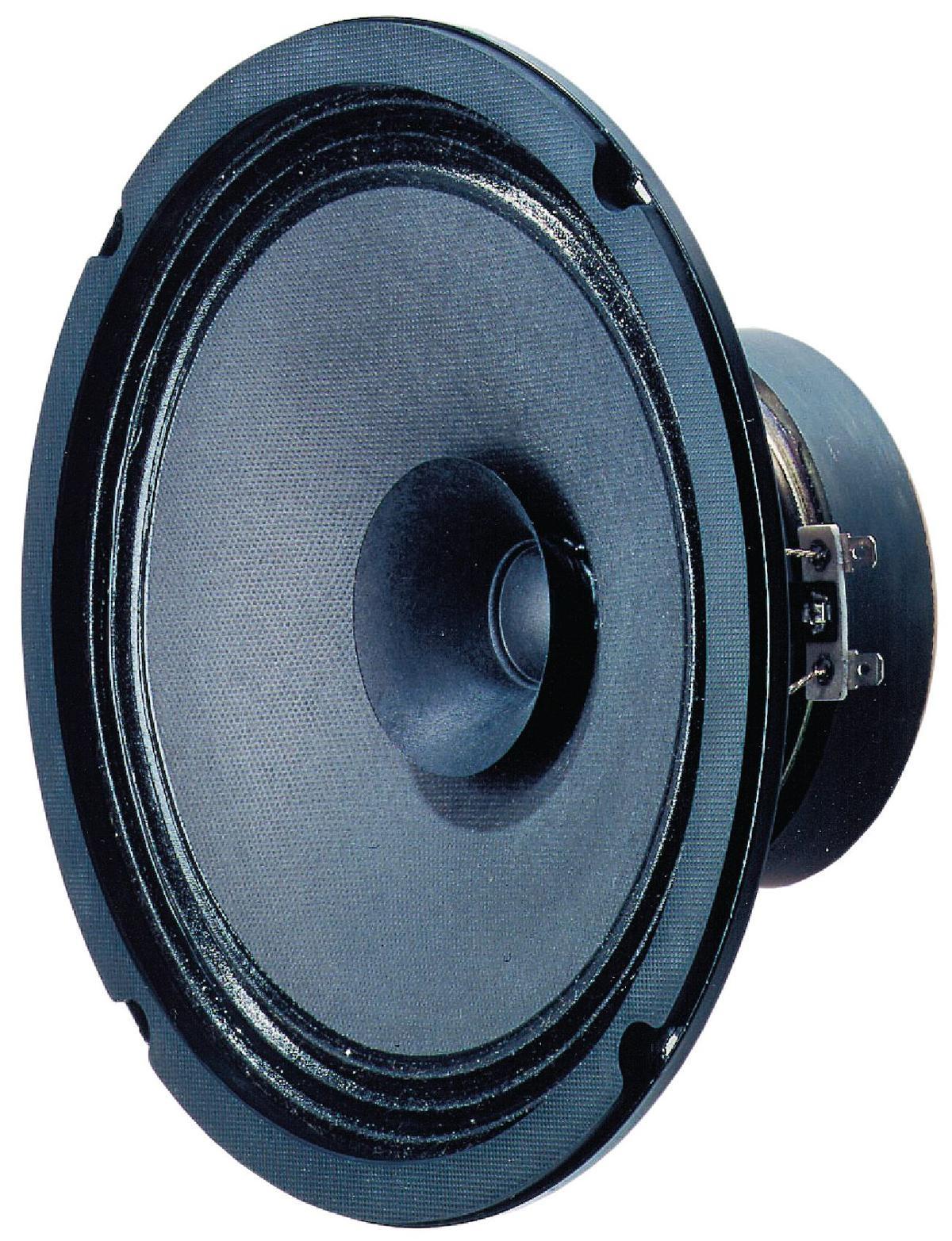 full range luidspreker 20 cm 8 8 ohm vs bg20 rutten. Black Bedroom Furniture Sets. Home Design Ideas