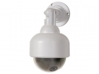 "CAMD8 NEP ""DOME"" CAMERA MET RODE LED"