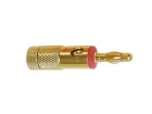 CM25R BANANA PLUGS 4mm GOLD - RED