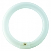 DTP01201 Philips TLE buis rond Circular 32W 830
