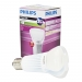 BK61663 Philips Master LED-lamp 13W E27 dimbaar